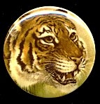 Plastic Limoges<br>38mm - Bengal Tiger<br>18 Pieces for