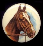 Plastic Limoges<br>38mm - Horse<br>18 Pieces for