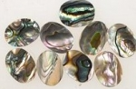 Abalone 16 x 11mm Oval<br>1 Gross For