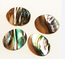 Abalone 10 x 8mm <br>oval<br>100 For
